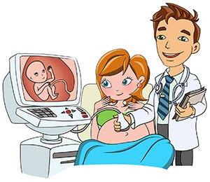 12 неделя беременности, Mammyclub
