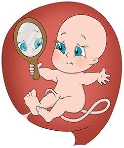 22 неделя беременности, Mammyclub