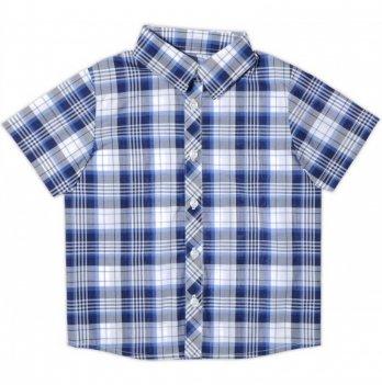 Рубашка для мальчика Garden baby, с коротким рукавом, сине-белая клетка, 30003-38