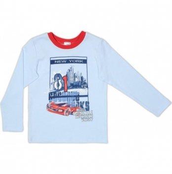 Джемпер для мальчика Garden baby, голубой, 39052-02