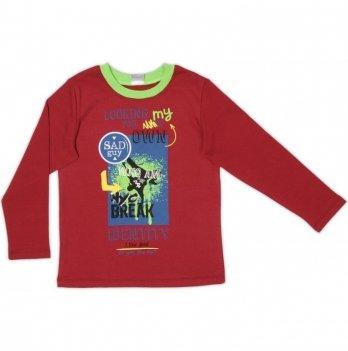 Джемпер для мальчика Garden baby, бордовый, 39053-02