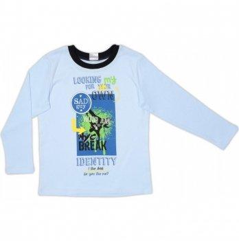 Джемпер для мальчика Garden baby, голубой, 39053-02