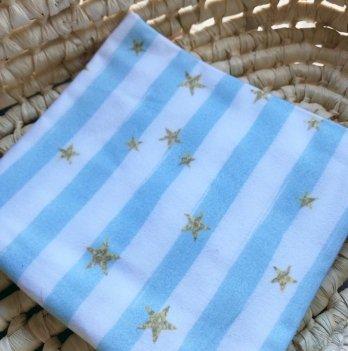 Пеленка фланелевая Embrace Голубые полоски