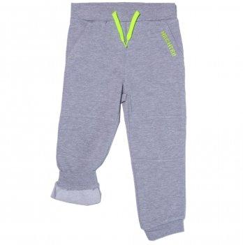 Штаны спортивные на флисе для мальчика Daniel Hechter светло-серые