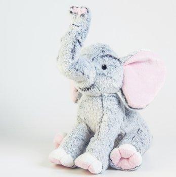 Слоник серый, Тигрес