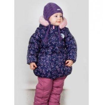 Комплект для девочки Evolution, возраст от 1 до 4 лет, серый/розовый