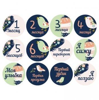 Набор наклеек для фото Memiks Перышки 0-6 месяцев рус.